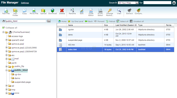File Manager in Action